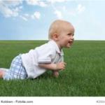 Baby-Bärengang